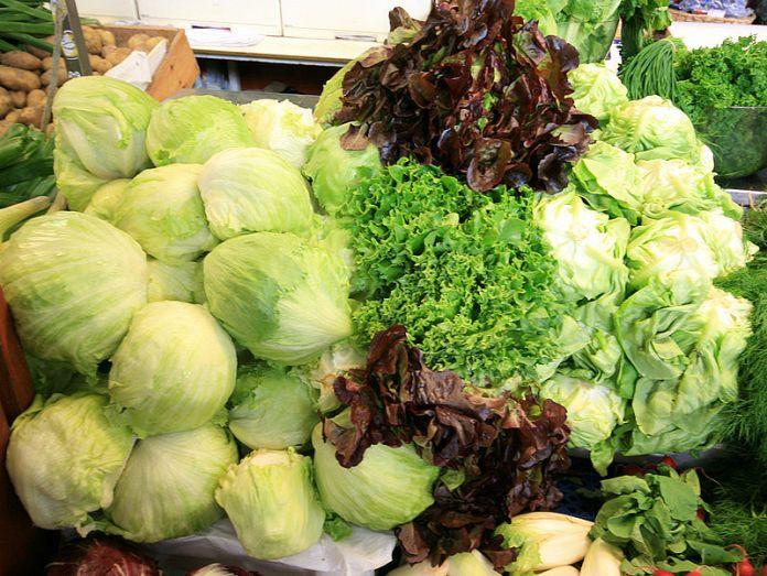 800px-lettuce_mix